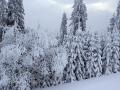 oboz-narciarski-Bialka_Tatrzanska_2014_2T (33)
