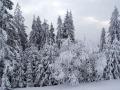 oboz-narciarski-Bialka_Tatrzanska_2014_2T (34)