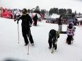 oboz-narciarski-Bialka_Tatrzanska_2013_4T (196)