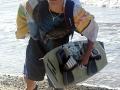 oboz-windsurfingowy-Dziwnowek_2012_4T_(147)